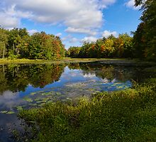 Autumn at Sahler Mills Lake by PineSinger