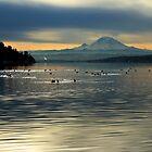 Mount Rainier on a Seattle Morning, 01/12/2012 by VimanaVisual