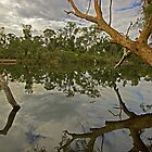 middle swan reserve by Elliot62
