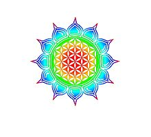 Flower of life - Lotus, healing & energizing Photographic Print