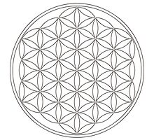 Flower of life, sacred geometry, energizing & purification by nitty-gritty