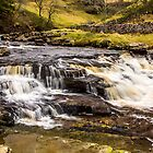 Above Thornton Force by Tony Shaw
