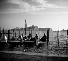 Venezia by Alex Volkoff
