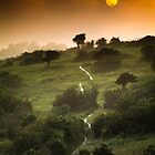 Full Moon Landscape at Sunset by Heidi Stewart