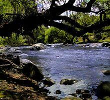 Rushing Rio Tomebamba by Al Bourassa