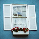 Blue Window by Jessie Lima