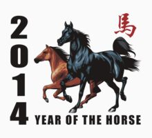 2014 Year of The Horse Kids Clothes