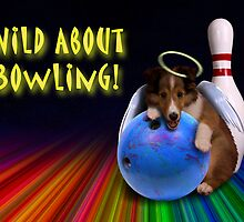Wild About Bowling Angel Sheltie Puppy by jkartlife