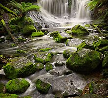 Horseshoe Falls, Mt Field, Tasmania #2 by Chris Cobern