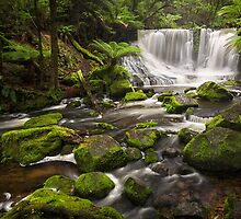 Horseshoe Falls, Mt Field, Tasmania by Chris Cobern