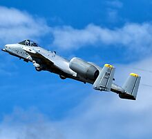 "USAF Fairchild Republic A10C Thunderbolt II ""Warthog"" 82-0649 SP by Andrew Harker"