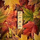 LIVE-Autumn InspireMe iPhone by onyonet photo studios