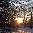 Sun by WendyM83