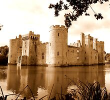 Bodiam Castle 2 by mikebov