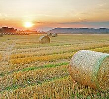 Hay bales at Sunset 2 by LexiTheMonster