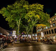Fall Night in Boston -3 by LudaNayvelt