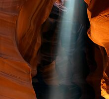 The Spot Light by American Southwest Photography