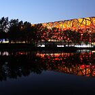 Beijing Olympic Stadium by Mark Bolton