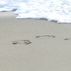 beach foot prints by Phototeen