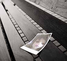 Creepy Doll Polaroid on Bench by DangRabbit