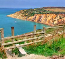 The Path To Alum Bay - I.O.W. by Colin J Williams Photography