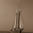 sailing in by Joseph Allert
