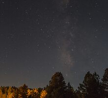 Starry Starry Night by RZSImages