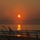 Sunrise on the Beach by Nancy Rohrig