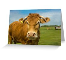 Oil Painted Limousin Cow Greeting Card