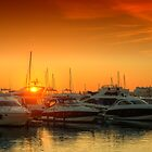 Marina Sunset by manateevoyager