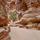 As-Siq or canyon in Nabataean ancient town Petra by travel4pictures