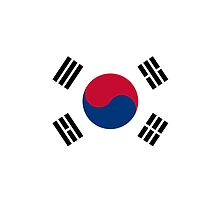 Iphone Case - Flag of South Korea II by Mark Podger