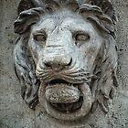 I'm the Guardian - Hear Me Roar! by Lucinda Walter