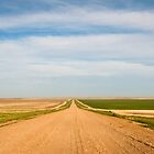 Farmland South Dakota by Audrey Farber