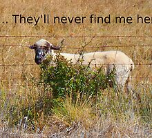 Shh... They'll never find me here... by Kassandra Ellison Fine Art