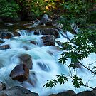 The Cascades of the Merced River by Barbara Burkhardt