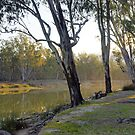 Barmah I by Harry Oldmeadow