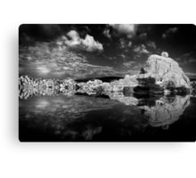 The Lighter Side Canvas Print