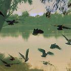 Australian Momentum by Lozzar Landscape