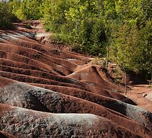 Cheltenham Badlands, Ontario, Canada - Mars on Earth by Georgia Mizuleva