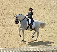 Dressage I by Ludwig Wagner
