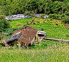 Derelict Farm In The Cajas Range Of The Andes - HDR by Al Bourassa