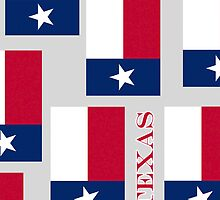 Smartphone Case - State Flag of Texas VII by Mark Podger