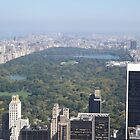 Aerial View of Central Park, Top of the Rock Observation Deck, New York City by lenspiro