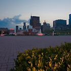 Buckingham Fountain in the summer by Sven Brogren