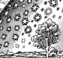Flammarion Engraving Transparent Sticker