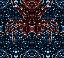 Kaleidoscopic Funnel Web - 01  by TysonLaucher