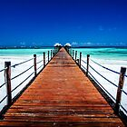 Dongwe Jetty :: Zanzibar by Clinton Hadenham
