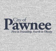 City of Pawnee by TheMoultonator