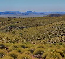Spinifex and blue hills by Greta van der Rol